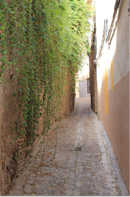 Toledo alley