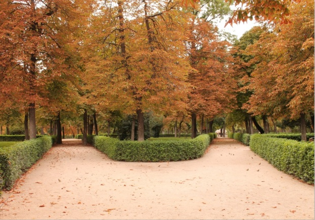 Some of the many paths in Retiro