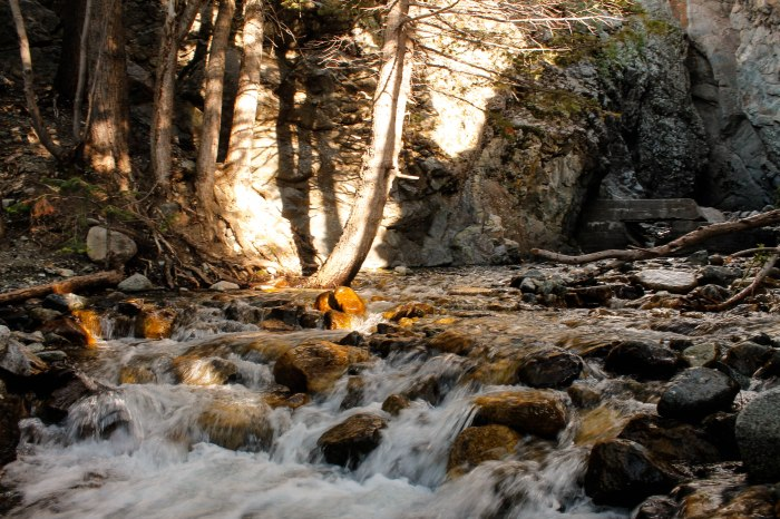 Mountain stream just before Zapata Falls, just a short walk from our campsite in Colorado.