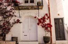 Red flowers and door_